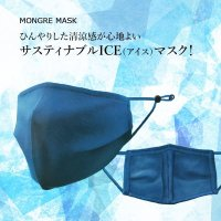 サスティナブルICE(アイス)マスク フリーサイズ、ストッパー付、マスク1枚・保冷剤8個 パッケージ入り